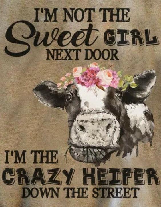 I'm not the sweet girl next door I'm the crazy heifer down the street Shirt
